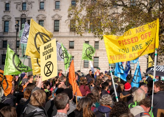 Extinction_Rebellion_Protest_Parliament_Square-7-6